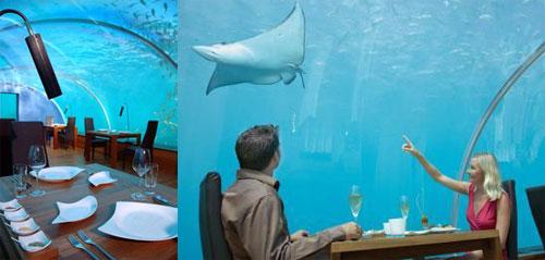 Loveisspeed sea underwater restaurant anantara for Ithaa prices