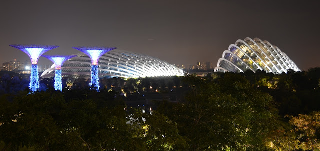 Gardens by the Bay at night domes