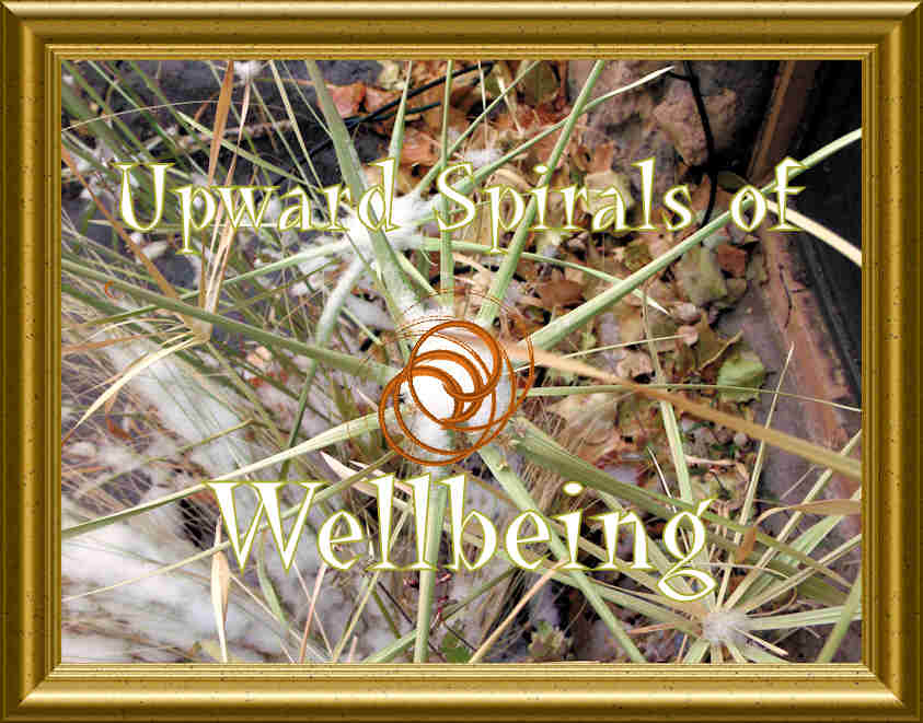 Upward Spirals of Wellbeing
