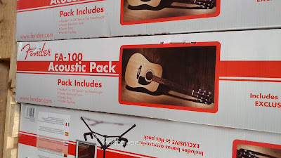 Fender FA-100 Acoustic Pack includes guitar and accessories