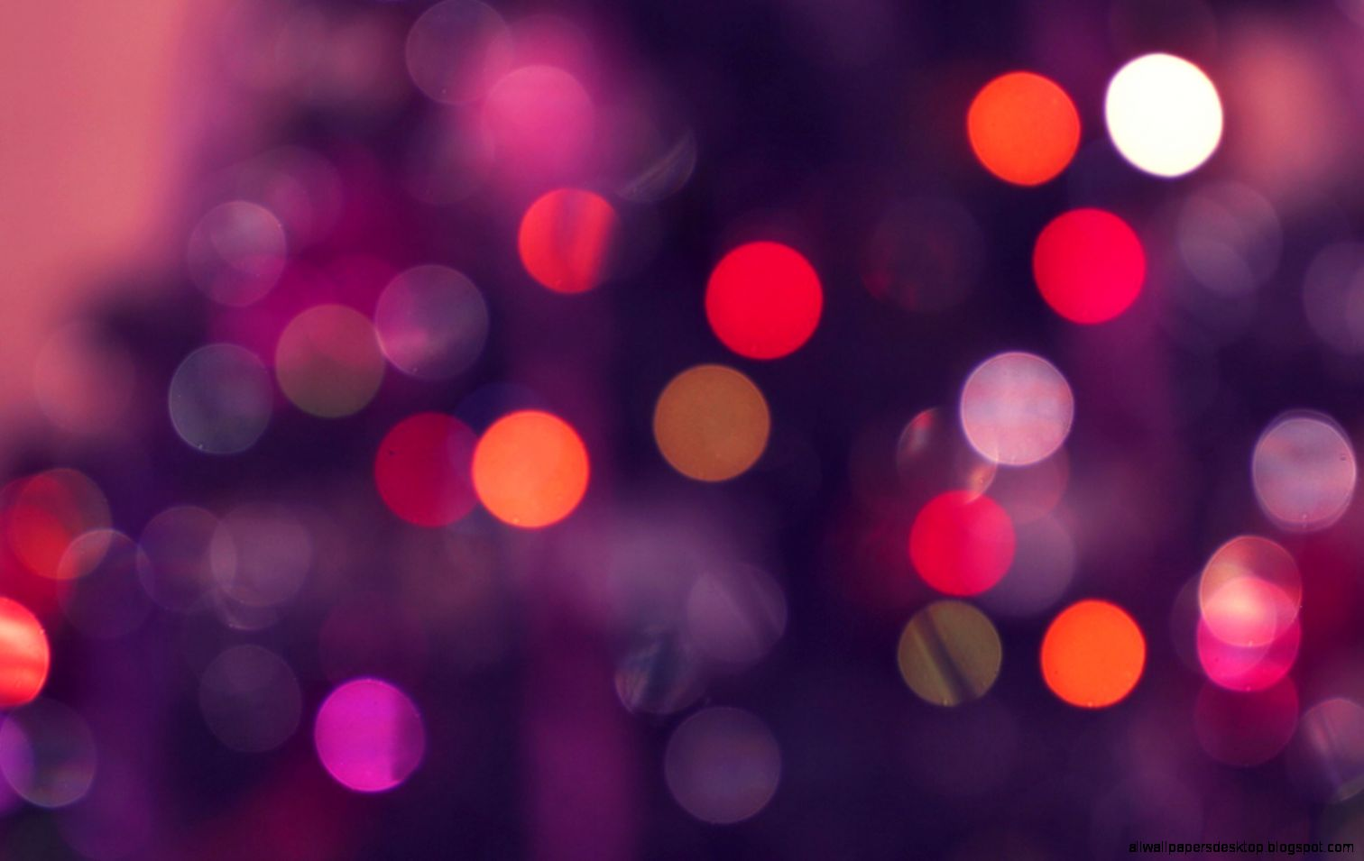 Beautiful Bokeh Photography As Well As Love Of Symbol Aphrodite