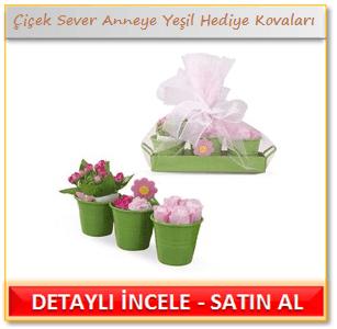 Çiçek Sever Anneye Yeşil Hediye Kovaları