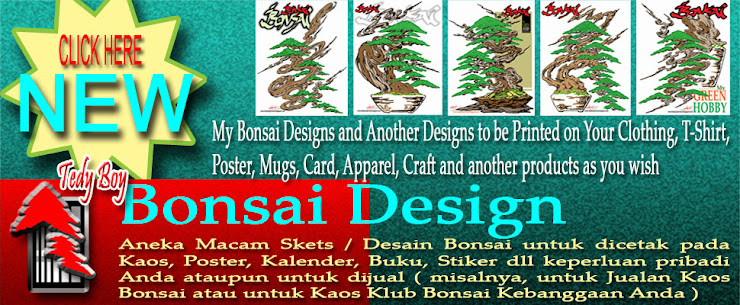 bonsai designs of tedy boy bonsai
