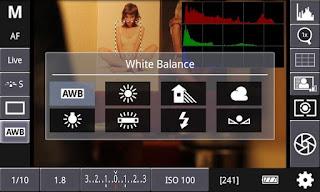 DSLR CONTROLLER (BETA) V0.98.0 APK