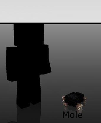 Mo' Creatures Mole Minecraft mod