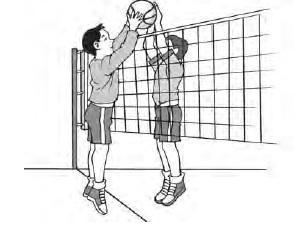Cara Blocking pada Bola Voly