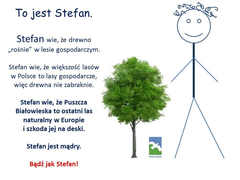 Bądź jak Stefan - ratuj puszczę