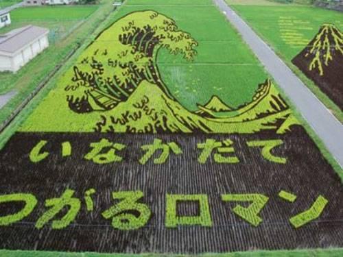Crop Art