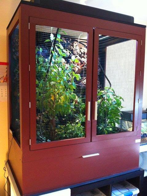 http://www.granjacamaleon.com/2012/10/como-construir-un-terrario-paso-paso.html