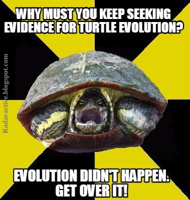 A reported transitional form showing the evolution of turtles is conjured from presuppositions and bad science.