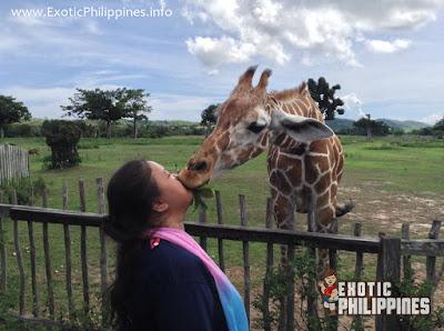 Calauit Wildlife Sanctuary Coron Palawan Busuanga Exotic Philippines Travel Blog