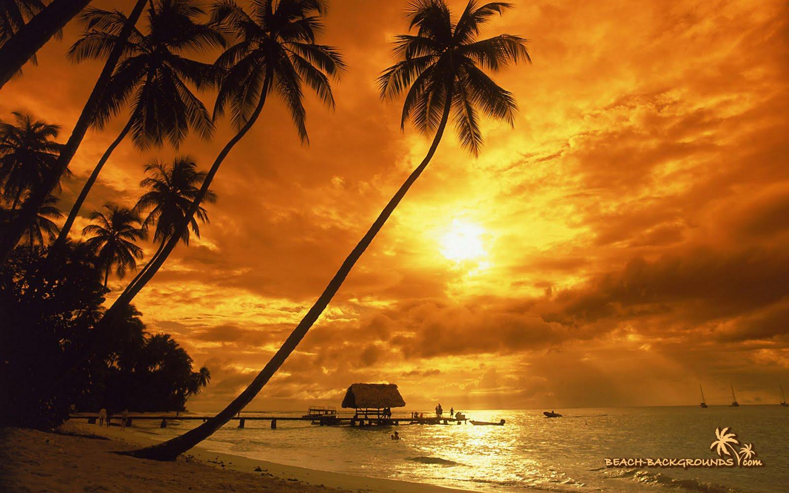 http://3.bp.blogspot.com/-AsMriLGK6xI/Ti7AjITSOTI/AAAAAAAANCc/q9gCEBCdGEg/s1600/tropical%2Bsunset%2Bwallpaper-1.jpg