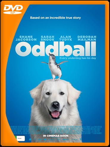 Oddball (2015) DVDRip Latino