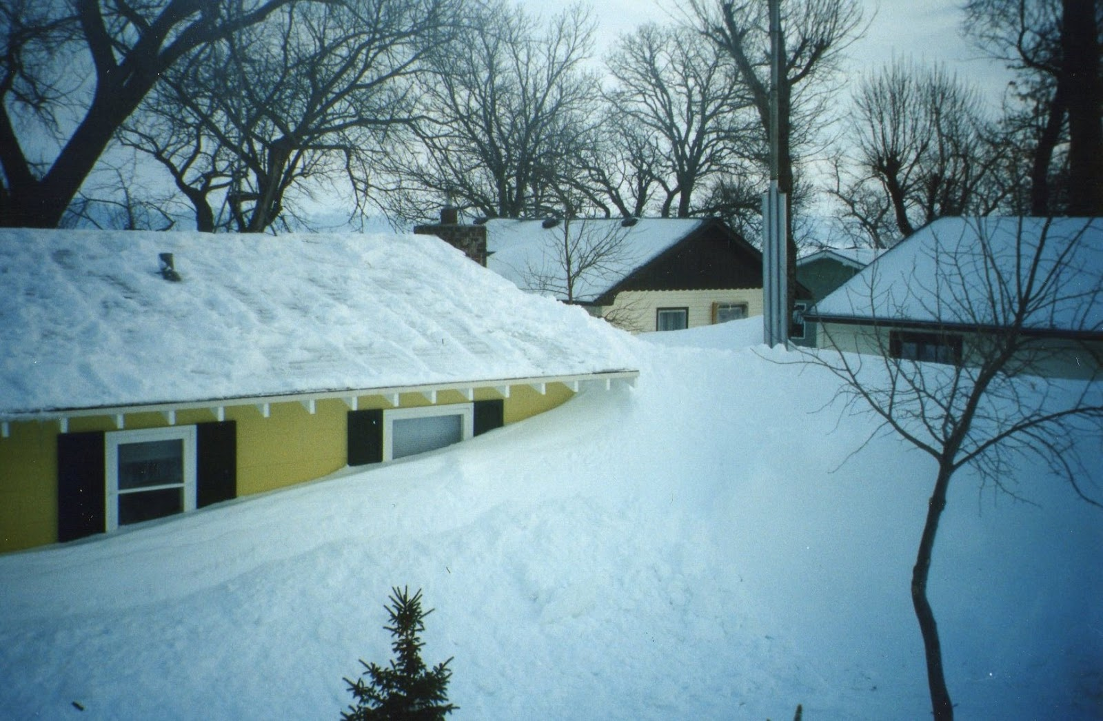 carol j larson author and artist author 39 s notes famous blizzards
