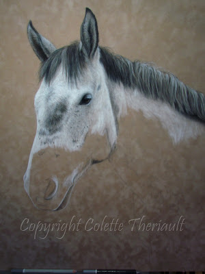 Horse Portrait in progress by Canadian Animal Artist Colette Theriault
