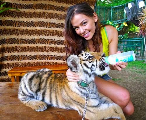 Residence-Inn, Tagaytay, Tagaytay-zoo