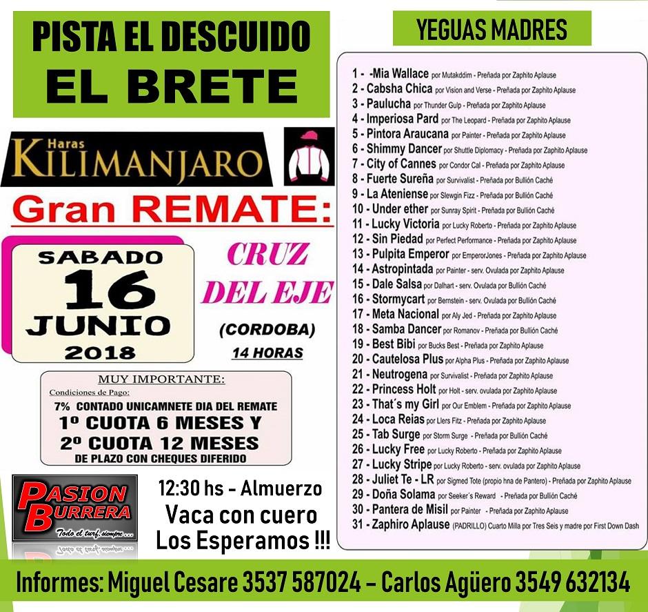 REMATE KILIMANJARO - EL BRETE