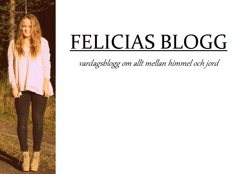 FELICIAS BLOGG
