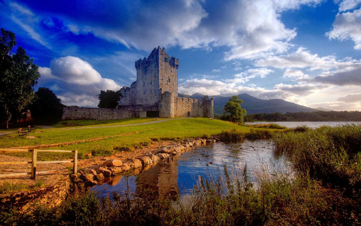 the irish summer The summer galway program is ideal for students interested in learning about irish studies in a lively, student-oriented city on ireland's west coast galway's.