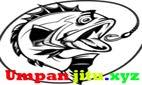 Umpan ikan mas | galatama | harian | lomba | harga murah