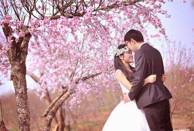 Những địa chỉ chụp ảnh cưới đẹp ở Hà Nội