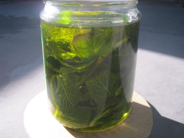 Oleato hierbabuena