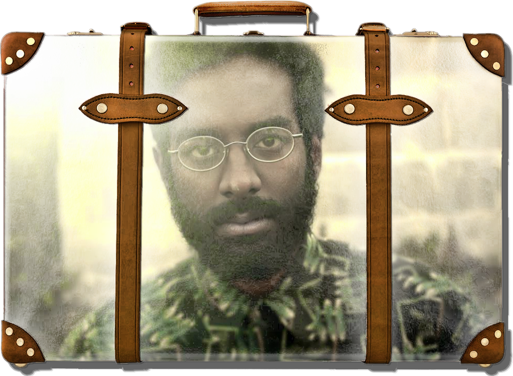 abhi in a suitcase