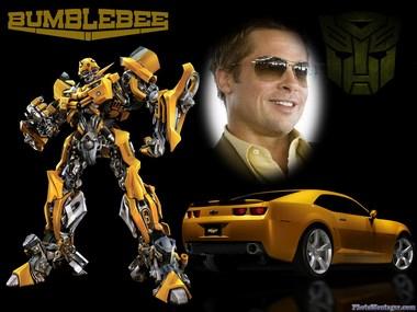 Fotomontaje Online Bumblebee