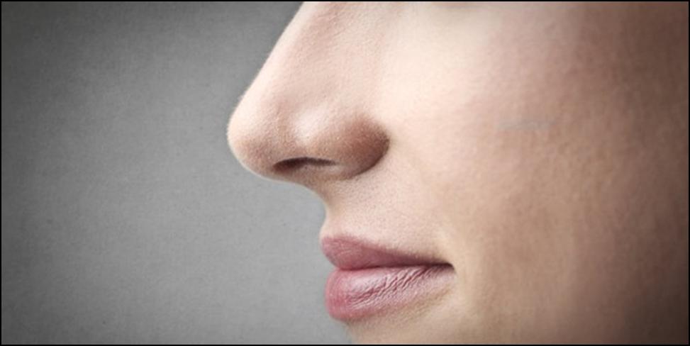 4 Fakta Unik Hidung Yang Harus Kamu Ketahui