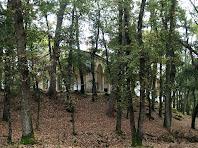 L'ermita de Sant Ponç enmig del bosc