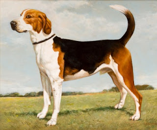 Choosing Best Dogs For Kids Information foxhound