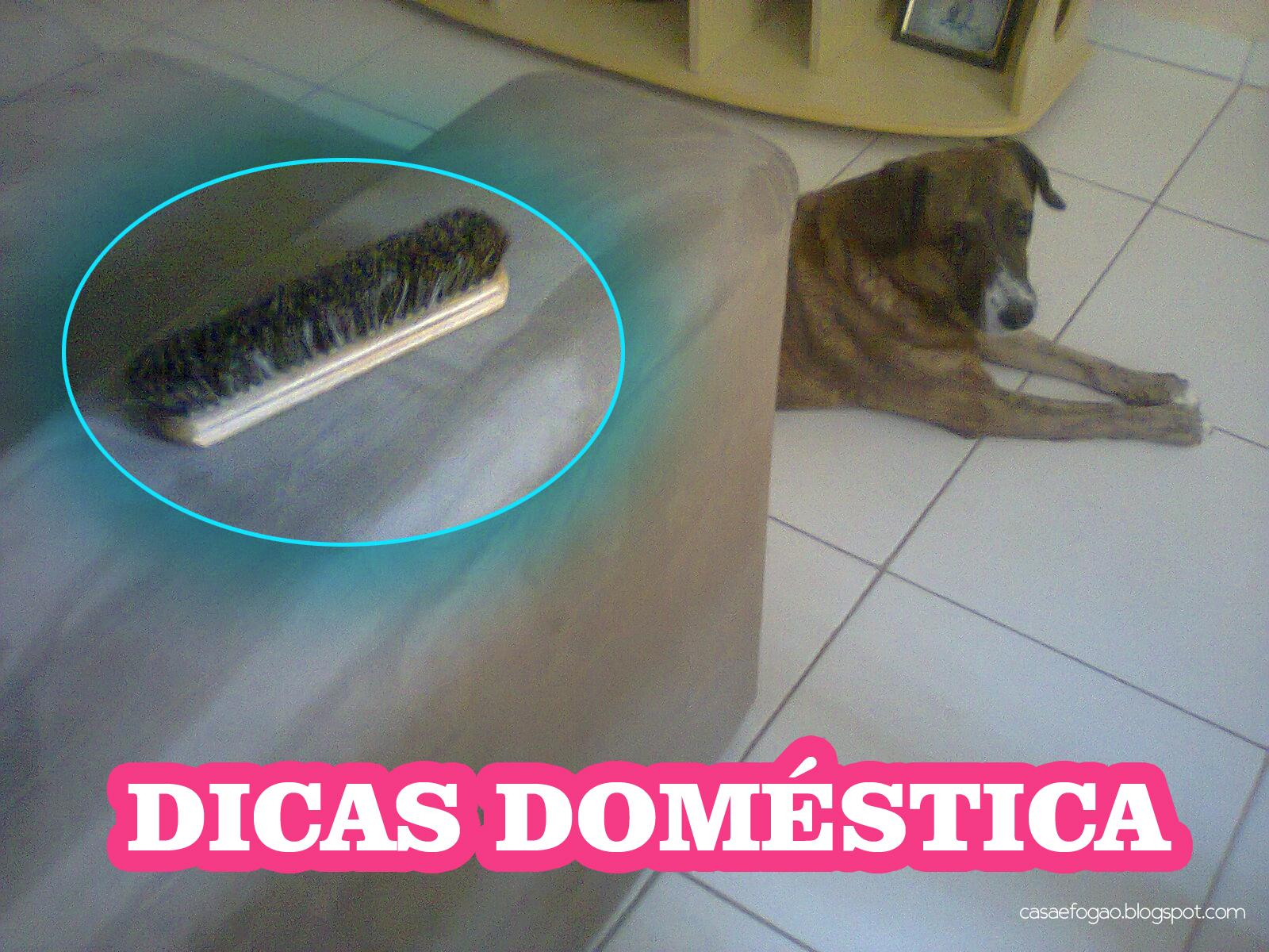 Como remover os pelos do cachorro do sofá