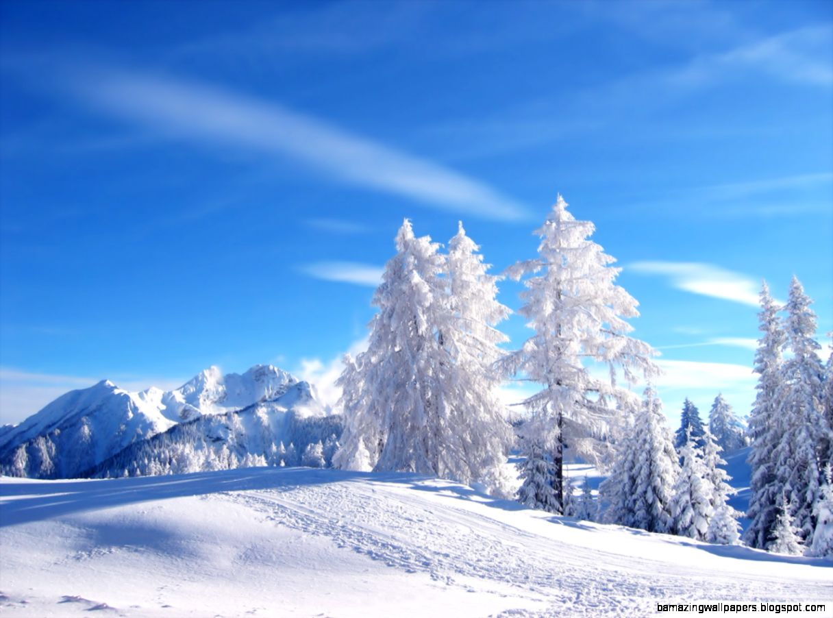 Snow Wallpapers For Desktop Free   WallpaperSafari
