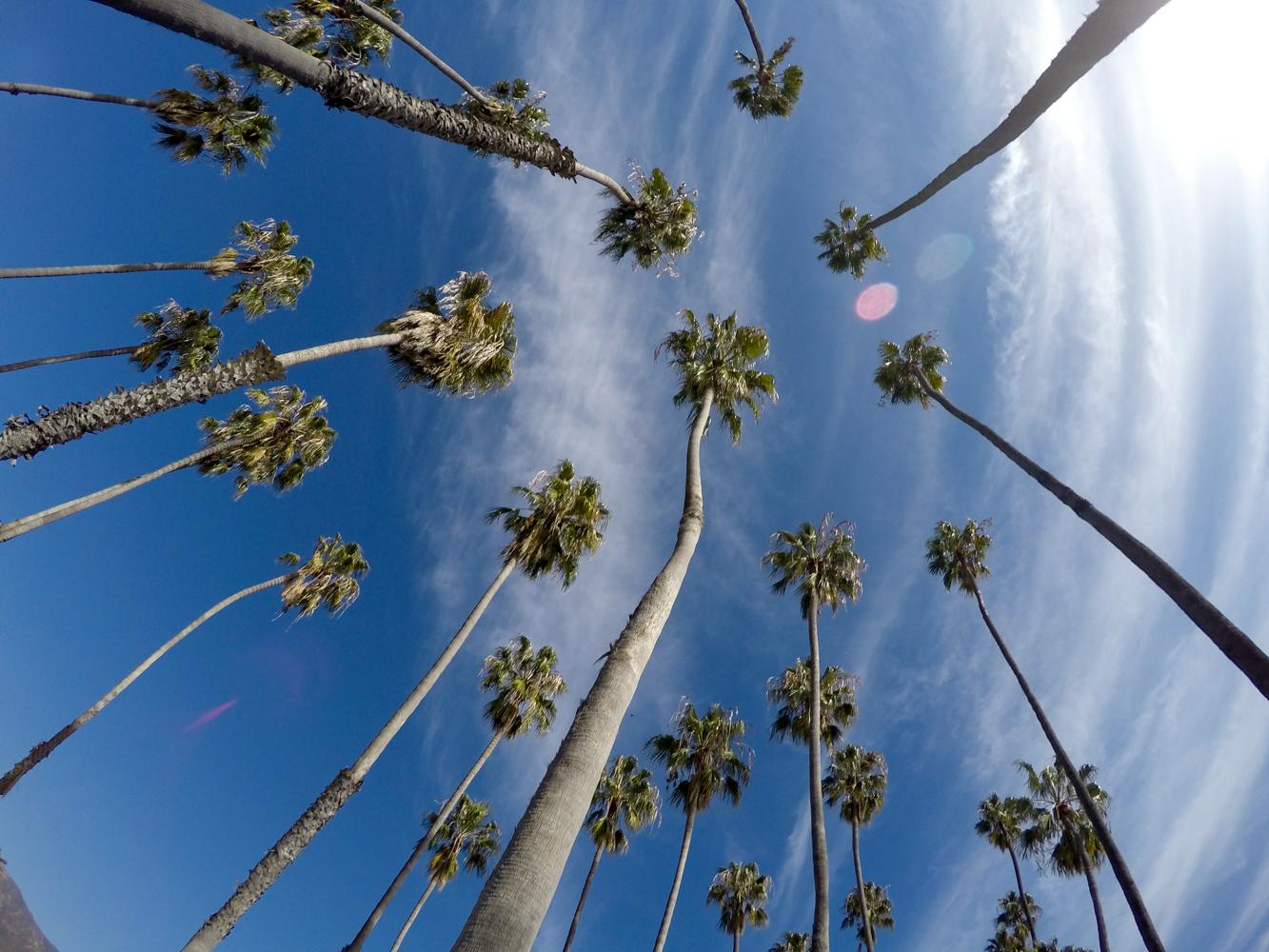 Four Seasons The Biltmore Santa Barbara Bike Rentals Review