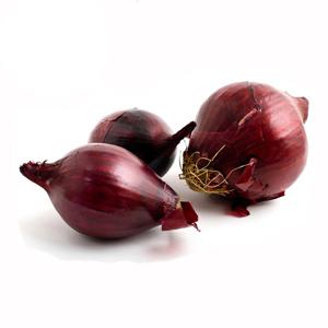 Bawang merah unggu, bawang bombay, bawang kecik, shallot