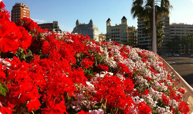 Valencia-Puente de las flores en mayo