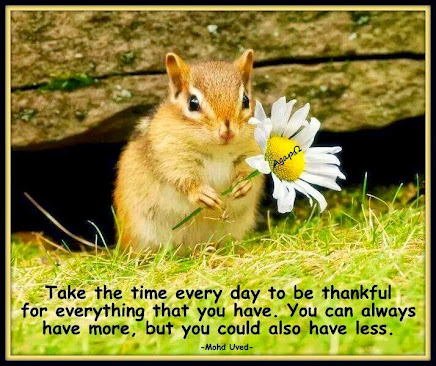 Be thankful for what you have!!!  Count your blessings.