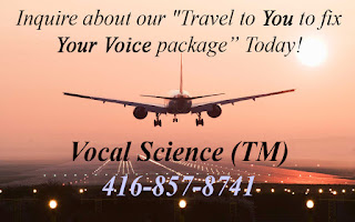http://www.vocalscience.com/about-us