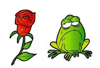 LA ROSA Y EL SAPO Rosa+y+sapo