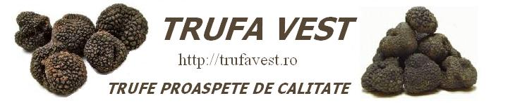 "Truffel Qualiti Transilvania ,,Trufavest"""