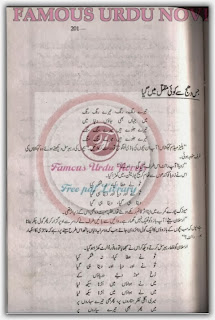 Jis dhuj se koi maqtal mein gaya by Sumaira Sharif Toor pdf.
