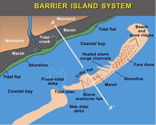 Barrier Jumps Galleries Barrier Islands