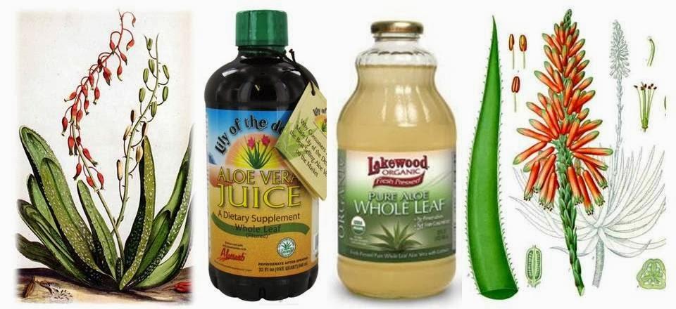 herbal alternative prednisone