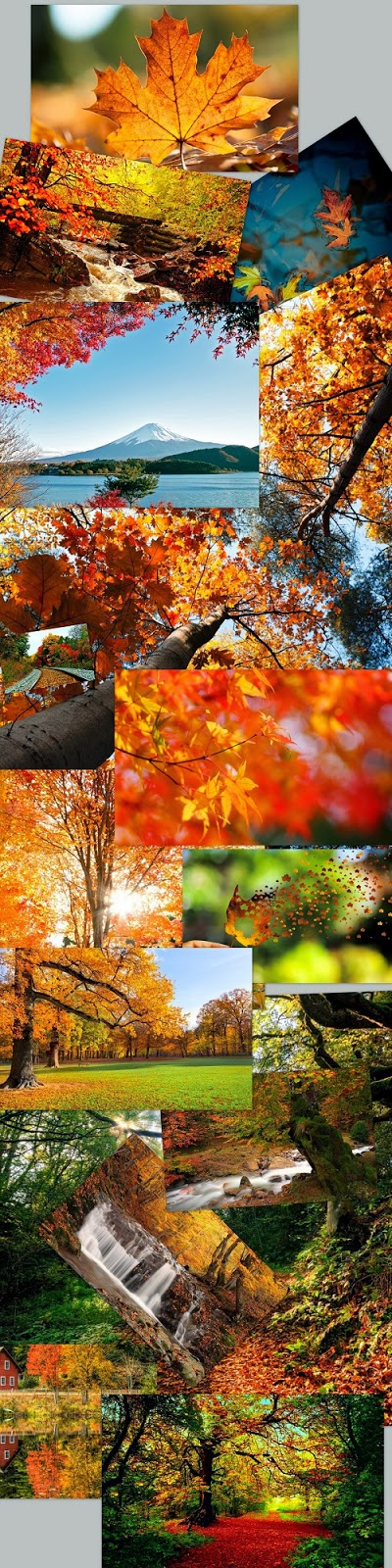 Autumn Theme For Windows 7 And 8 8.1
