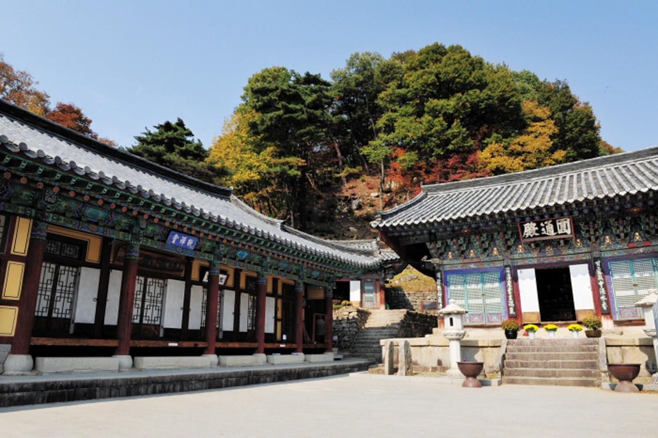 Palgong Foliage Festival in Daegu
