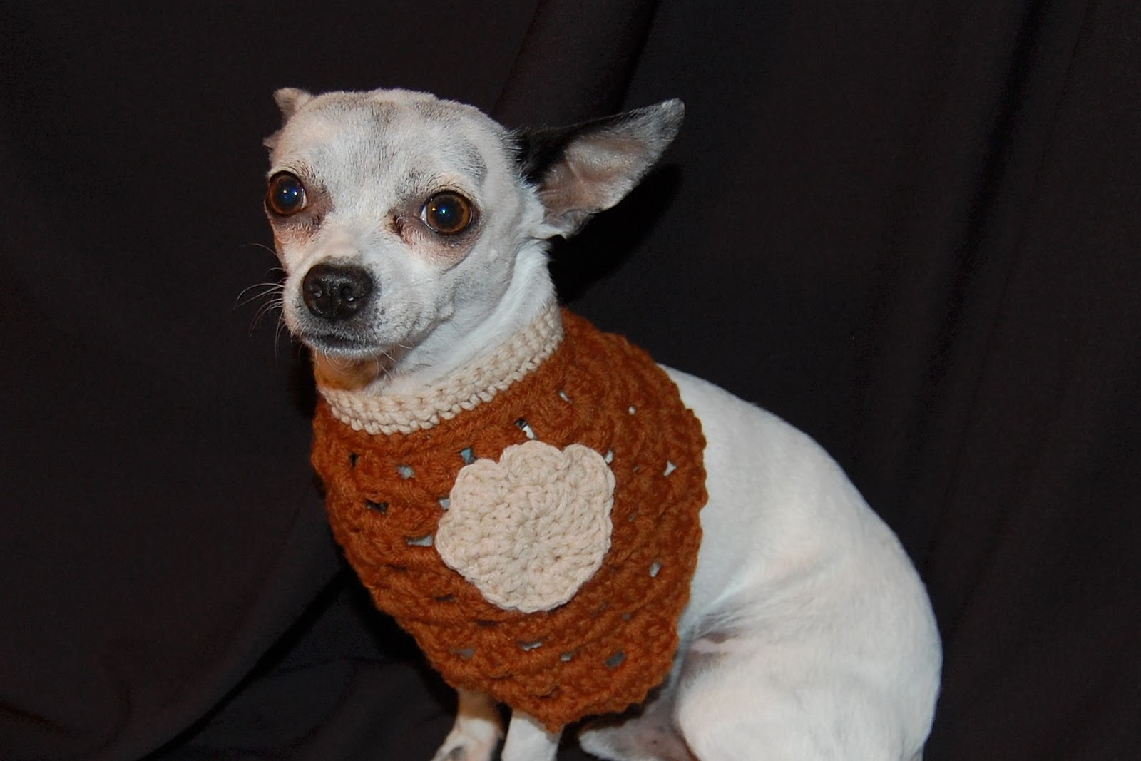 Free Crochet Pattern For Dog Bandana : Posh Pooch Designs Dog Clothes: Crochet Pattern for Dog ...
