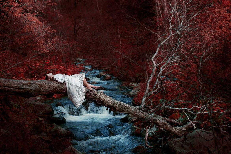 photo de Katerina Plotnikova d'une jeune femme en robe blanche allongée sur une branche