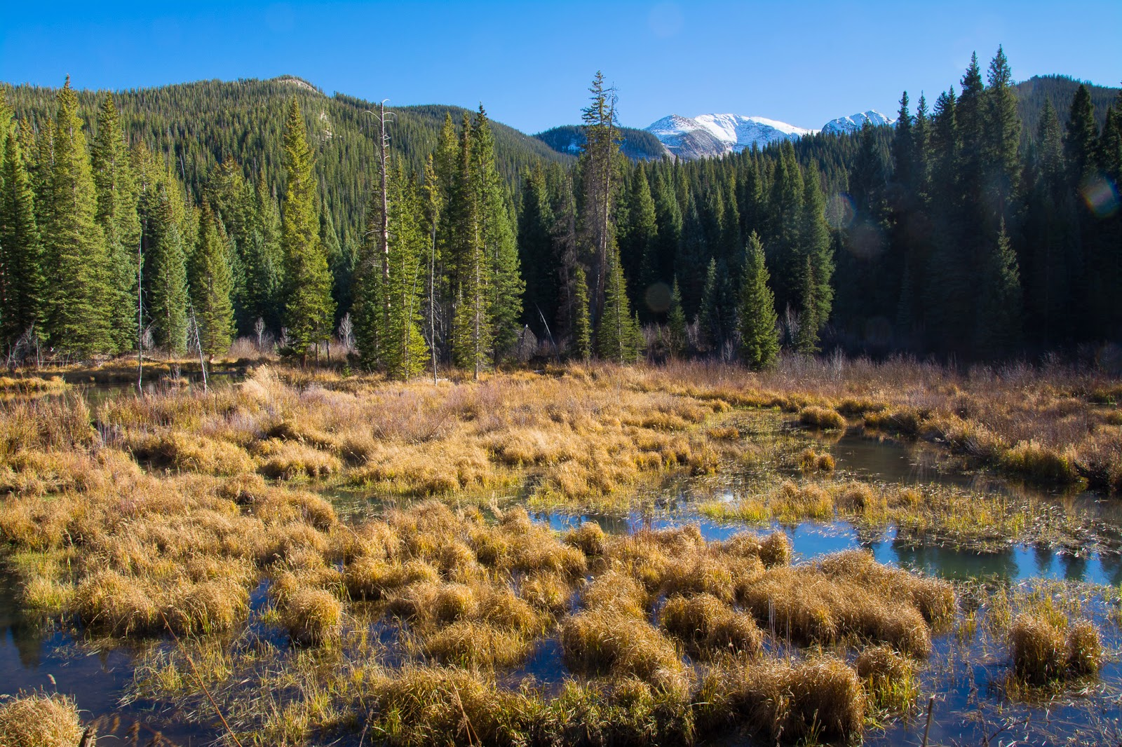 Beaver Ponds, Kebler Pass Road