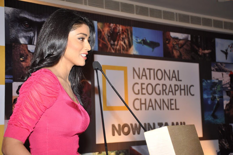 Shriya at NGTC Launch hot photos
