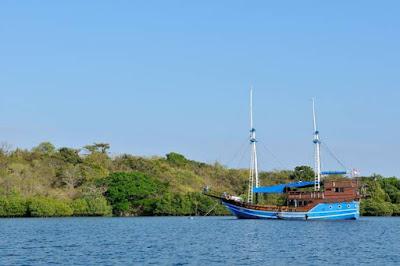 Indahnya Bawah Laut Pulau Menjangan